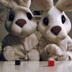 stop_calling_me_honey_bunny_main_image