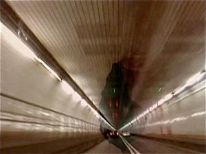 TunnelVision-CoralShort